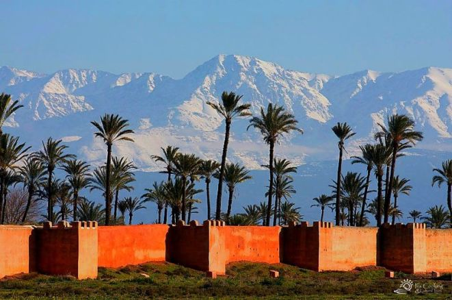 morocco-marrakech-skyline